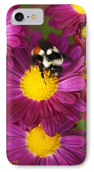 Red-tailed Bumble Bee Phone Case by Christina Rollo