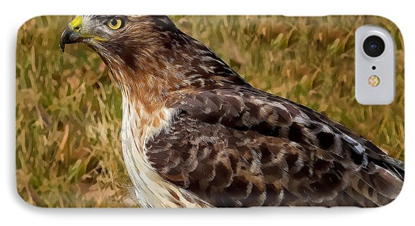 Red Tailed Hawk Close Up IPhone Case by John Absher