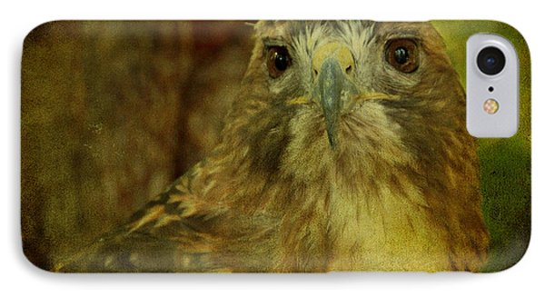 Red-tailed Hawk II IPhone Case by Sandy Keeton