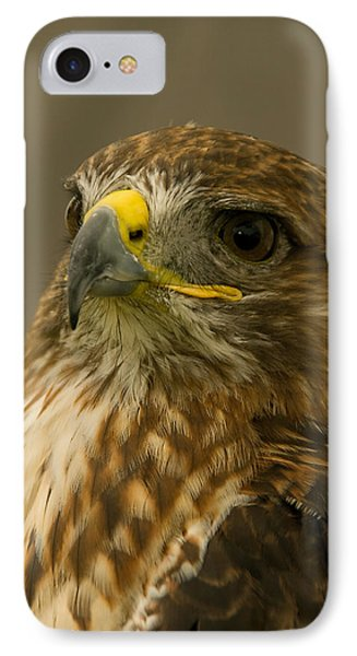 I'm So Proud - Red Tailed Hawk IPhone Case