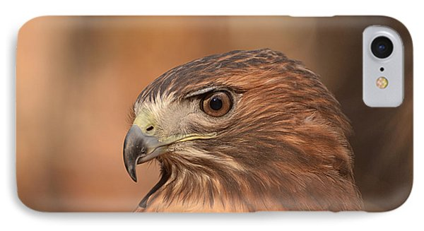 Red-tailed Hawk IPhone Case by Nancy Landry