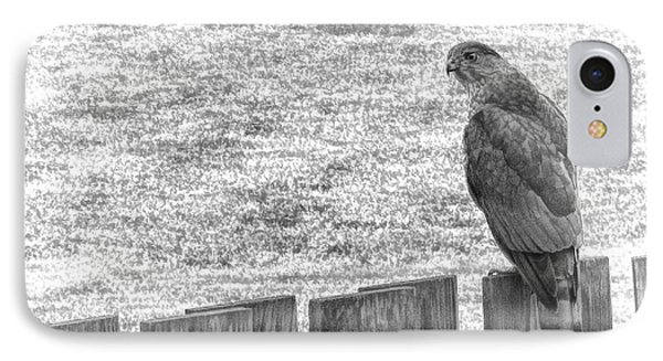 Red Tailed Hawk  IPhone Case by Olivier Le Queinec