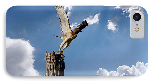 Red-tailed Hawk Perch Series 5 Phone Case by Roy Williams
