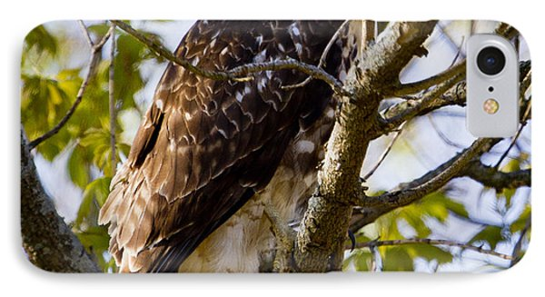 IPhone 7 Case featuring the photograph Red Tailed-hawk by Ricky L Jones