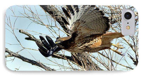 Red Tailed Hawk Sequence #1 IPhone Case by Stephen  Johnson