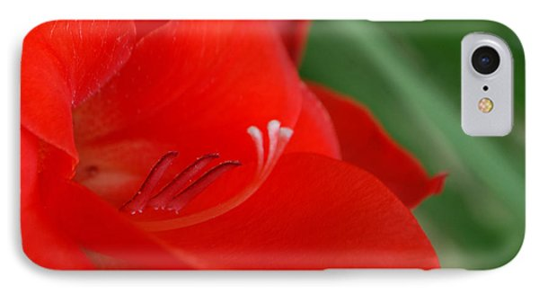 Red Temptation IPhone Case