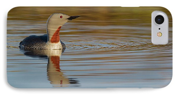 Loon iPhone 7 Case - Red-throated Loon by Ken Archer