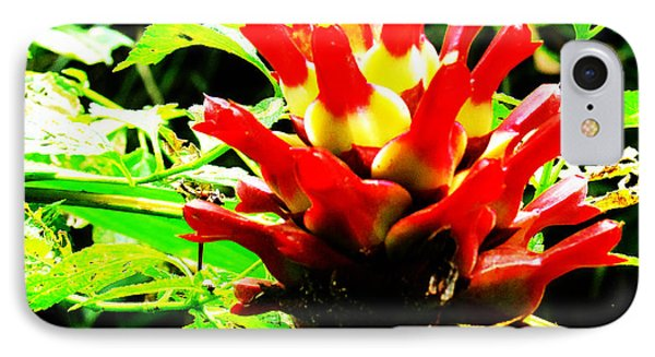 Red Torch Ginger Flower One Phone Case by Tina M Wenger