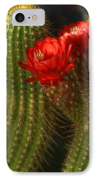 Red Torch II  Phone Case by Saija  Lehtonen