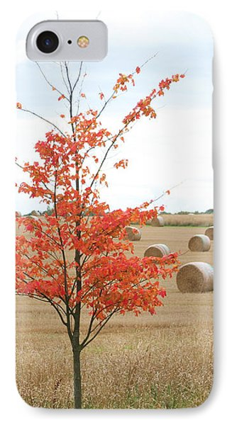 IPhone Case featuring the photograph Red Tree by Elizabeth Lock