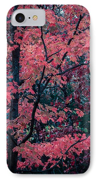 IPhone Case featuring the photograph Red Tree by Wayne Meyer