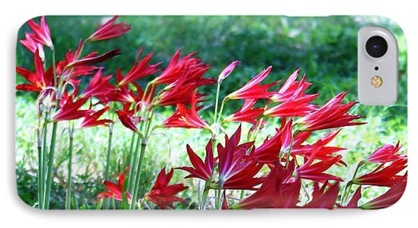 IPhone Case featuring the photograph Red Trumpets by Ellen O'Reilly
