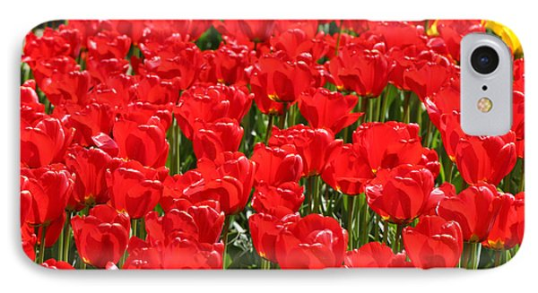 Red Tulip Field Phone Case by Tap On Photo