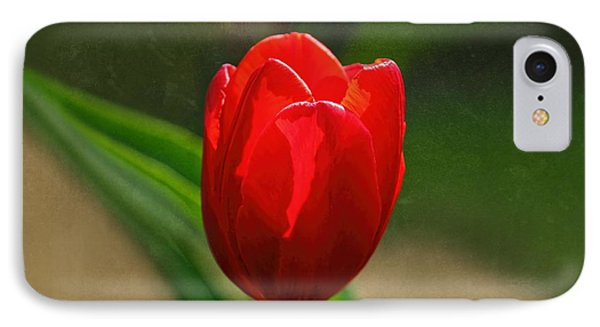 IPhone Case featuring the photograph Red Tulip Spring Flower by Tracie Kaska