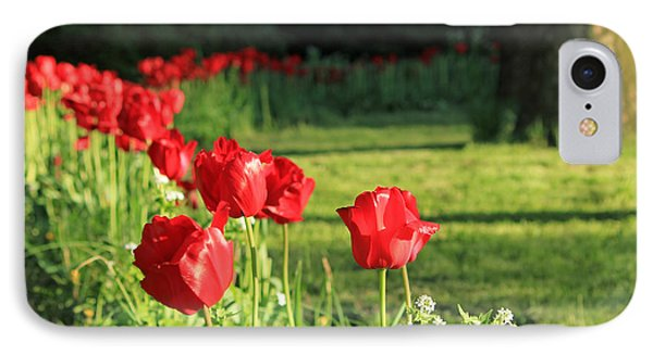 IPhone Case featuring the photograph Red Tulips by Jose Oquendo
