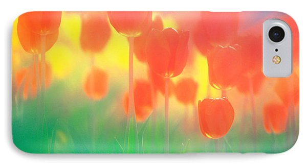 Red Tulips IPhone Case by Panoramic Images