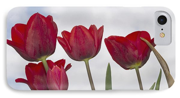 IPhone Case featuring the photograph Red Tulips by Wanda Krack