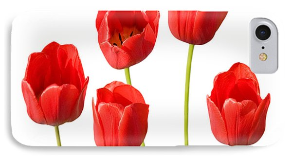 Red Tulips White Background Phone Case by Natalie Kinnear