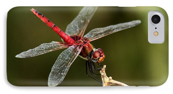 Red-veined Darter  - My Joystick IPhone Case