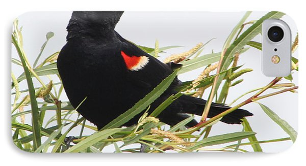 IPhone Case featuring the photograph Red-winged Beauty by Anita Oakley
