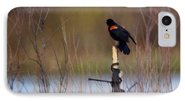 Red Winged Blackbird 2 IPhone Case by Ernie Echols