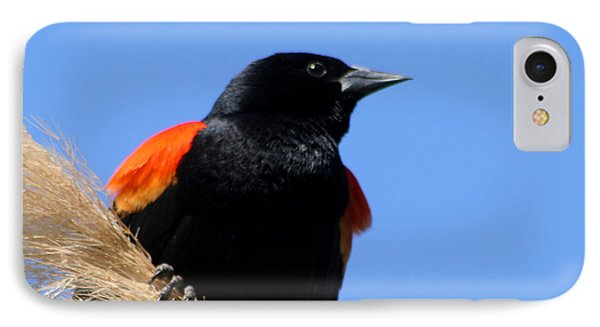 IPhone Case featuring the photograph Red-winged Blackbird by Bob and Jan Shriner
