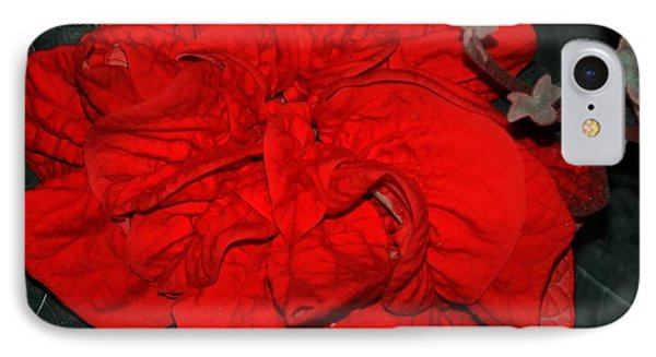Red Winter Rose Phone Case by Kathleen Struckle