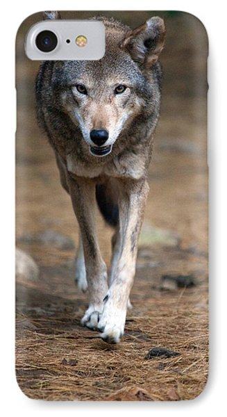 Red Wolf Strut Phone Case by Karol Livote