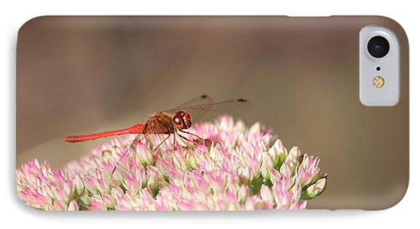 Red Wonder Phone Case by Sue Chisholm