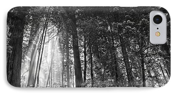 Red Woods 2 IPhone Case by Thomas Born