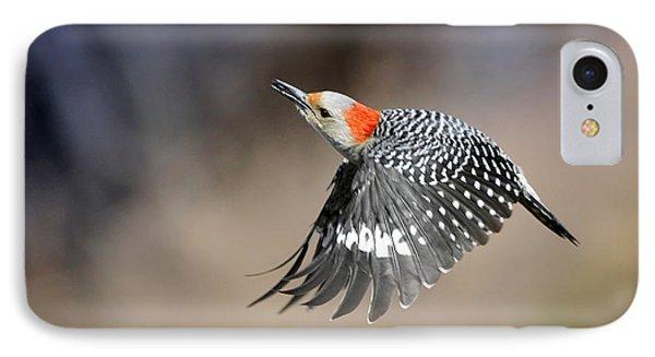 Redbelly Woodpecker Flight IPhone Case by Nava Thompson