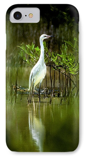IPhone Case featuring the photograph Reddish Egret 9c by Gerry Gantt