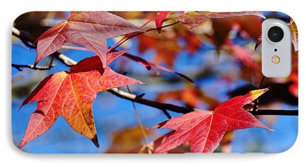 Reds Of Autumn IPhone Case