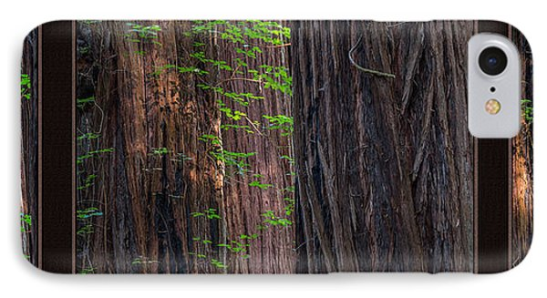 Redwood Texture Triptych IPhone Case by Leland D Howard
