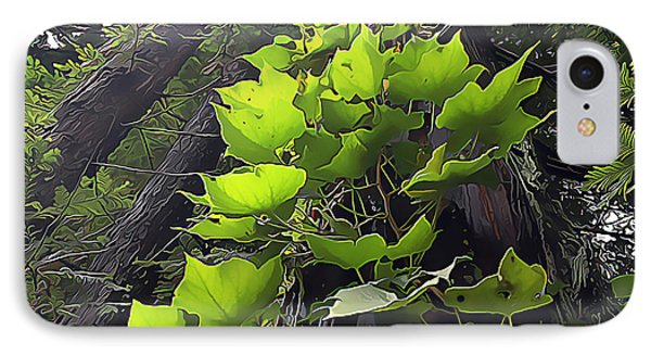 Redwood Trees And Ivy  Leaves IPhone Case by Wernher Krutein