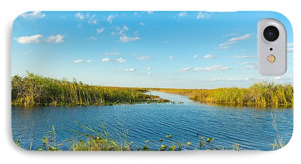 Reed At Riverside, Big Cypress Swamp IPhone Case by Panoramic Images