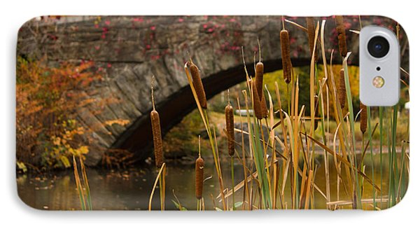Reeds And Gapstow Bridge IPhone Case