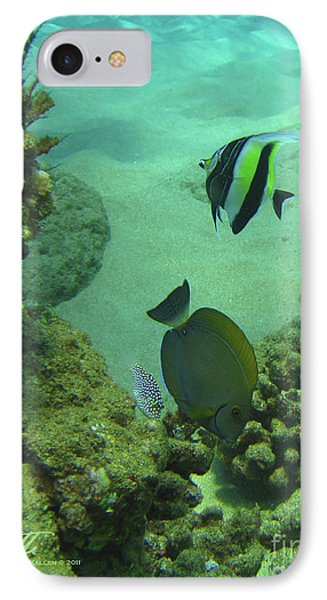 Reef Life IPhone Case by Suzette Kallen