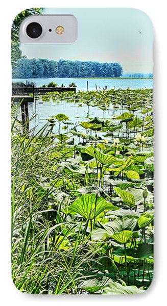 Reelfoot Lake Lilly Pads IPhone Case by Bonnie Willis