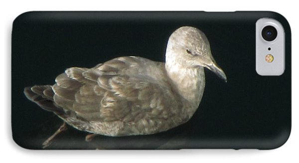 Refections Of A Gull IPhone Case by Jennifer Wheatley Wolf