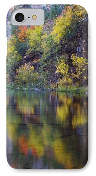 Reflected Fall IPhone Case