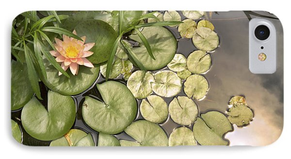 Reflected Light Upon Flowering Water Lilies IPhone Case by Jason Politte