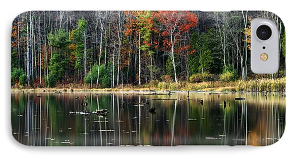 Reflecting Autumn IPhone Case by Christina Rollo