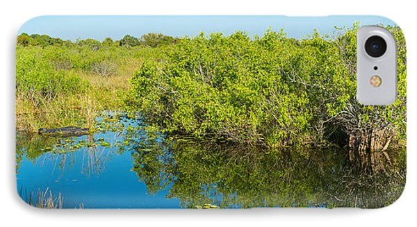 Anhinga iPhone 7 Case - Reflection Of Trees In A Lake, Anhinga by Panoramic Images