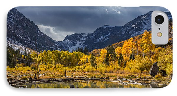 Reflections Of Autumn IPhone Case by Tassanee Angiolillo