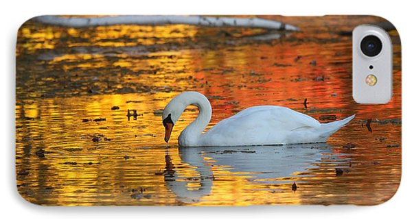 Reflections On Golden Pond IPhone Case