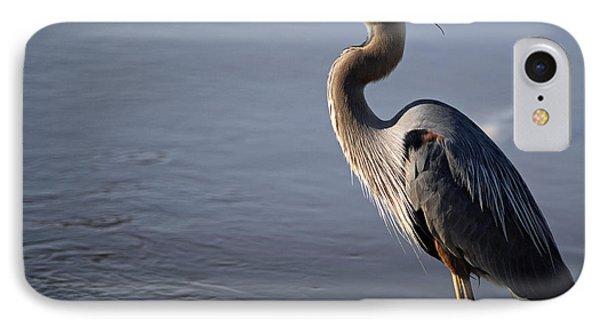 Regal Bird IPhone Case by Tamera James