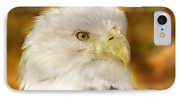 IPhone Case featuring the photograph Regal Eagle  by Brian Cross
