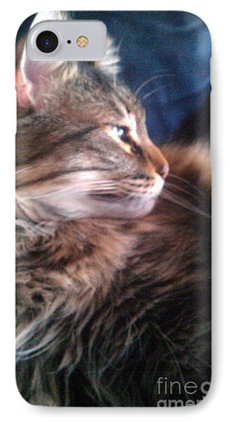 IPhone Case featuring the photograph Remembering Bo by Jacqueline McReynolds