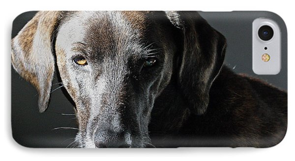 IPhone Case featuring the photograph Rescue Dog - Osa by Peggy Collins